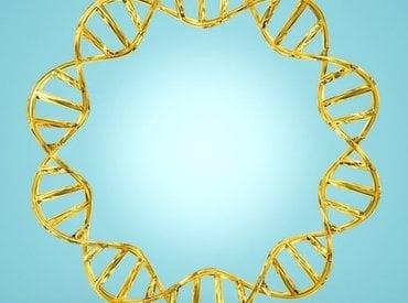 معالجة القشرة: نظرة عن قرب على الميكروبيوم