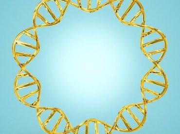 Traitement pellicules cheveux: zoom sur le microbiome